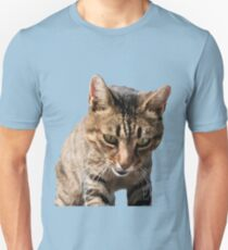 Tabby Cat Looking Down From Above Vector T-Shirt
