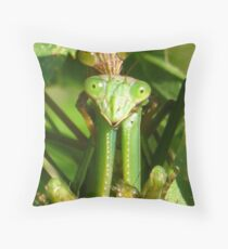 Female and Male Praying Mantis Throw Pillow