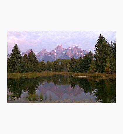 Grand Teton at Schwabacher's Landing Photographic Print