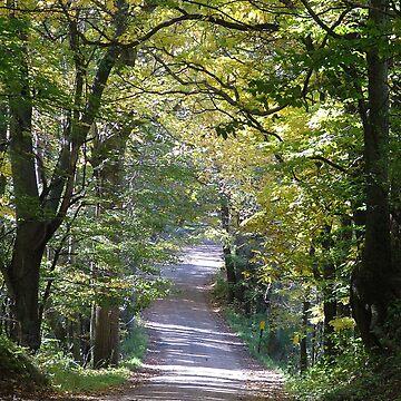 Autumn Backroad by dekomsyrokcih