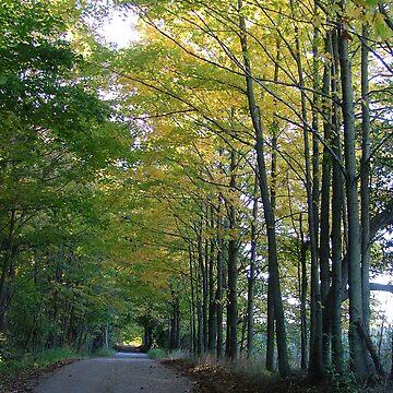 Backroads in Autumn by dekomsyrokcih