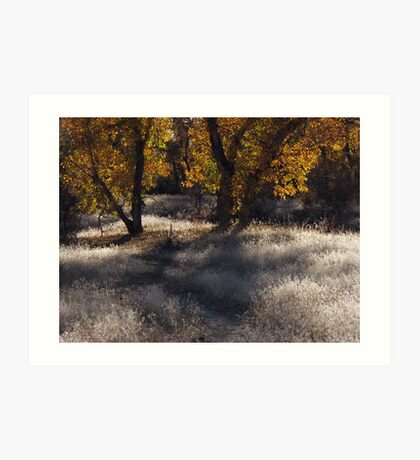 Path Into Fall Art Print