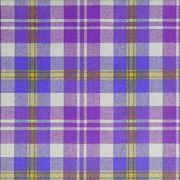 TARTAN PATTERN 56 by IMPACTEES