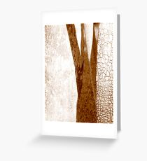 Contrasts!  Greeting Card