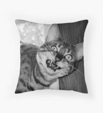 Catitude Throw Pillow