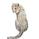 Cheetah Watercolor Detailed Looking Back Big Cat Safari by wanderinglaur