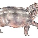 Baby Tiptoeing Hippo Safari Animal Watercolor by wanderinglaur