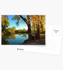 Autumn Delight (001) Postcards