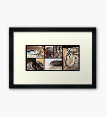 Magie's Reptiles Framed Print