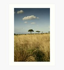The Plains of Africa Art Print
