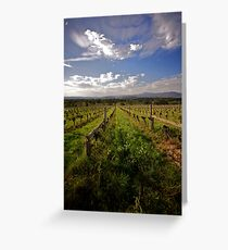 What's old is new again - non-irrigated old vines at Yarra Yerring Greeting Card
