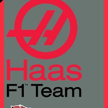 Haas F1 Team by F1Dynamics