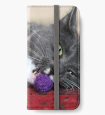 Ball games iPhone Wallet/Case/Skin