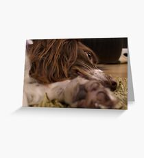 It's A Dog's Life... Greeting Card