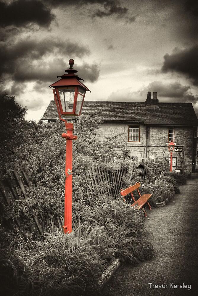 By the Gas Light - Levisham Station by Trevor Kersley