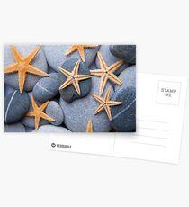 Starfish on a Pebble Beach Postcards