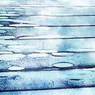 Rear Window Lily Pond by FrancisD