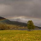 The Trossachs Scotland by M.S. Photography/Art