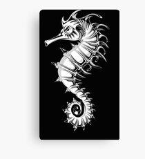 Sea horse black and white Canvas Print