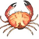 Crab: Fish of Portugal by Best Fish Boutique