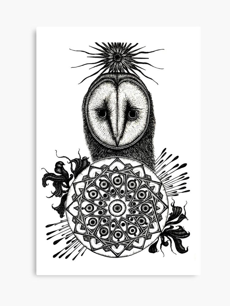 Pen Artistic Owl Drawing