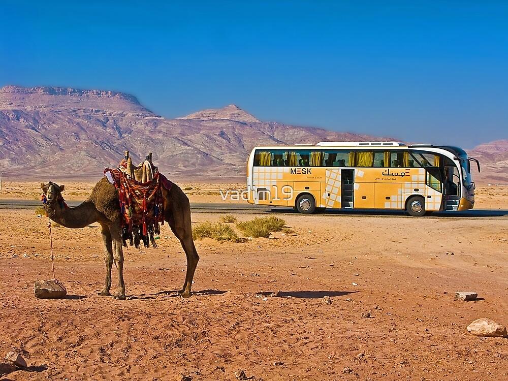 Ship of the desert. Jordan. by vadim19