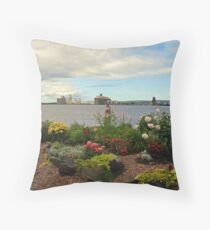 A look at Superior/Duluth Throw Pillow