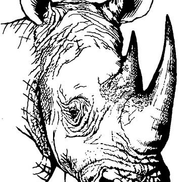 Big Five - Rhino by shadowmachina