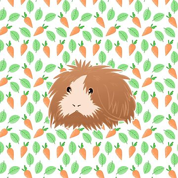 Cute Guinea Pig by JTBeginning-x