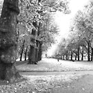 In the park | London by LiriMor