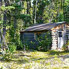 Trappers Cabin and Fish Smoking Tent Frame by MaeBelle