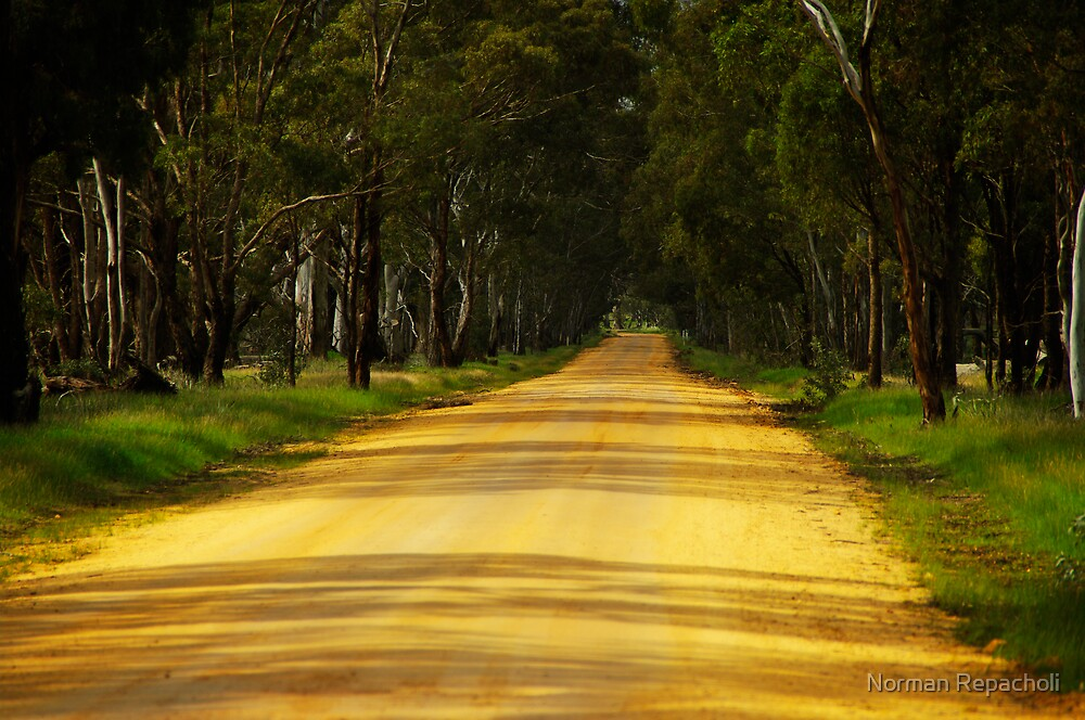 Dusty road by Norman Repacholi