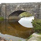 Dartmoor Bridge Reflection by lezvee