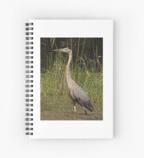 Chippewa Flowage Great Blue Heron Spiral Notebook