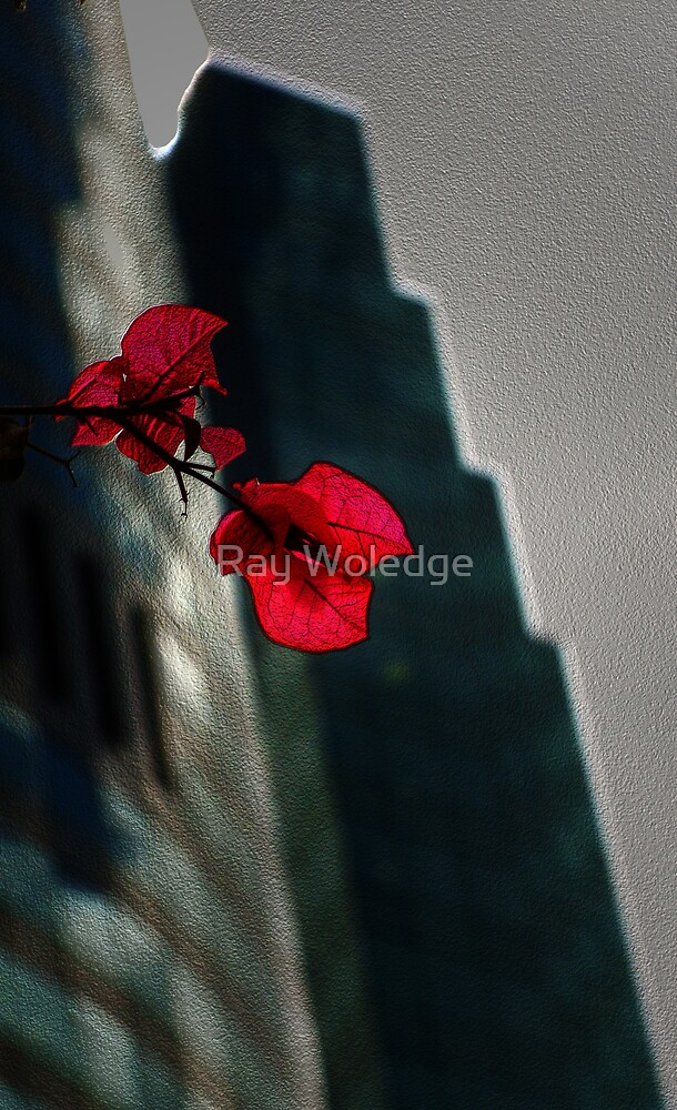 A touch of red by Ray Woledge