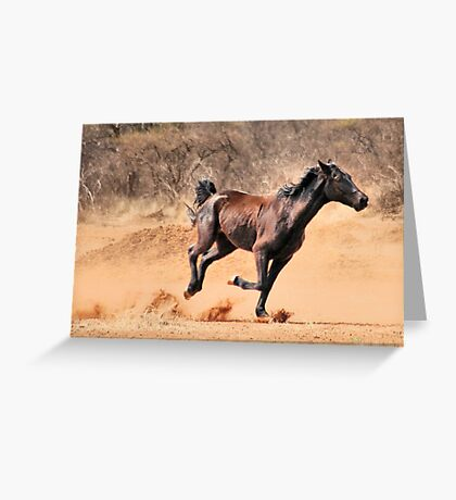 "THIS IS ""BRONCO""  Greeting Card"