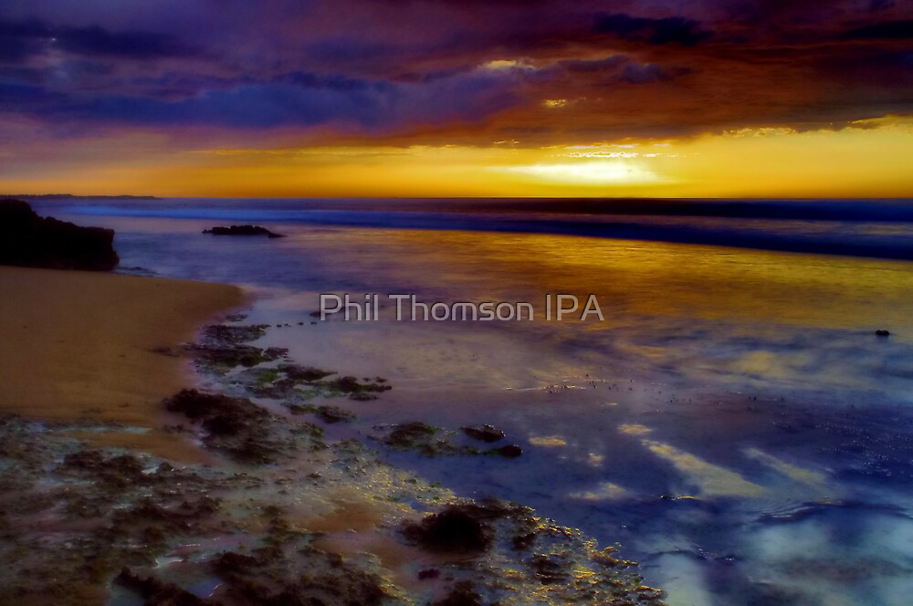 """Morning Speculation"" by Phil Thomson IPA"