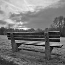 A Quiet Bench by relayer51
