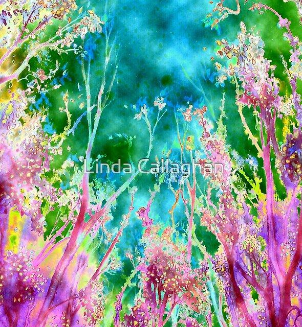 Tree Fantasy by Linda Callaghan