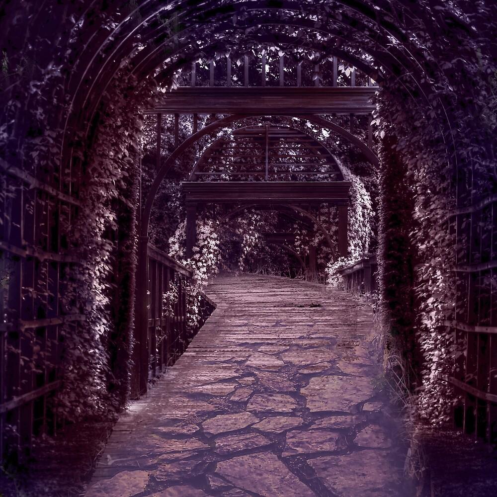Transmutation of a Path in Purple by Miratia
