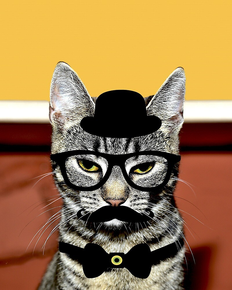 Cute Disguise Funny Cat With Moustache & Bowler Hat by Bubble-Designs