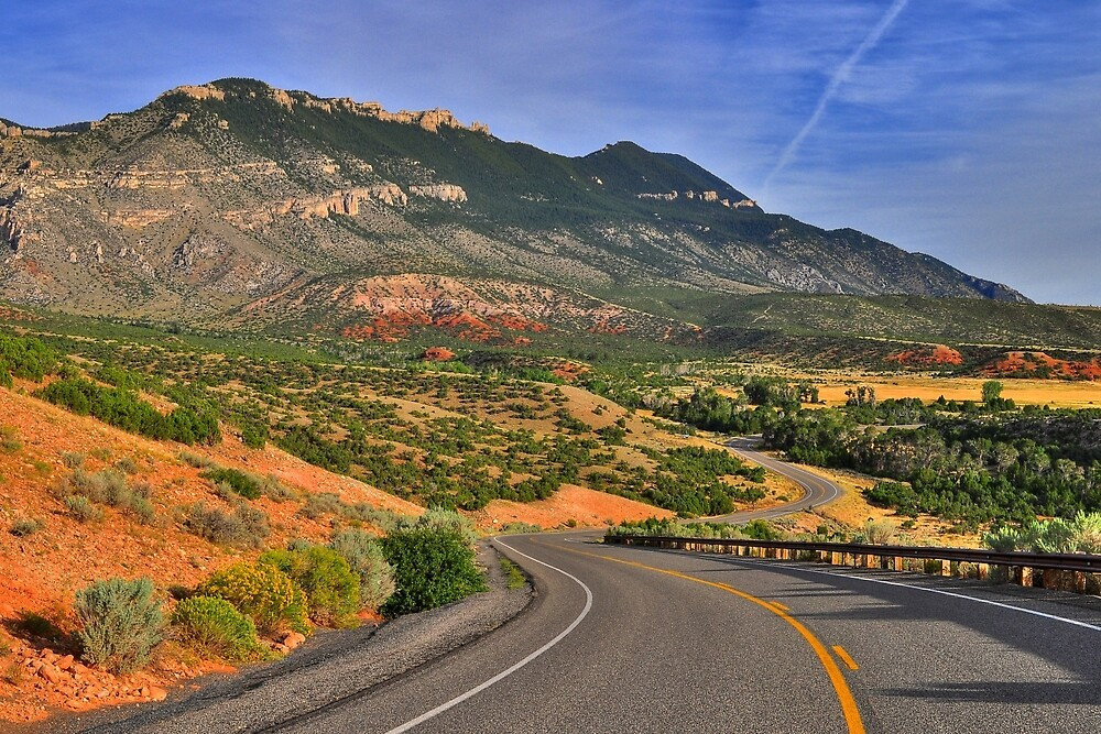 Bighorn Road (1273) by pinkdream