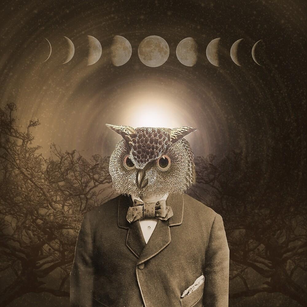 The Owl at Midnight by jolenecasko