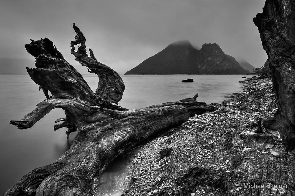 Rainy Morning - Tasmania by Michael Treloar