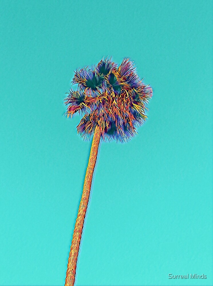 Palm Tree by Surreal Minds