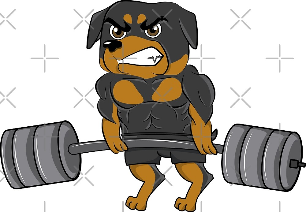 Funny Rottweiler Weightlifting Bodybuilding by ilovepaws