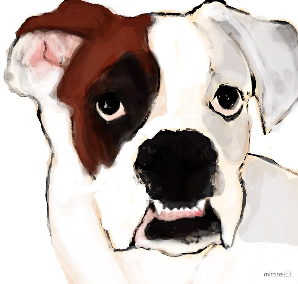 boxer dog by mirena23