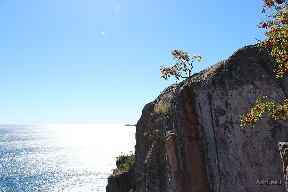 Cliffs of Superior  by AshSea3