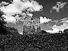 Towering Etal Keep by Ryan Davison Crisp