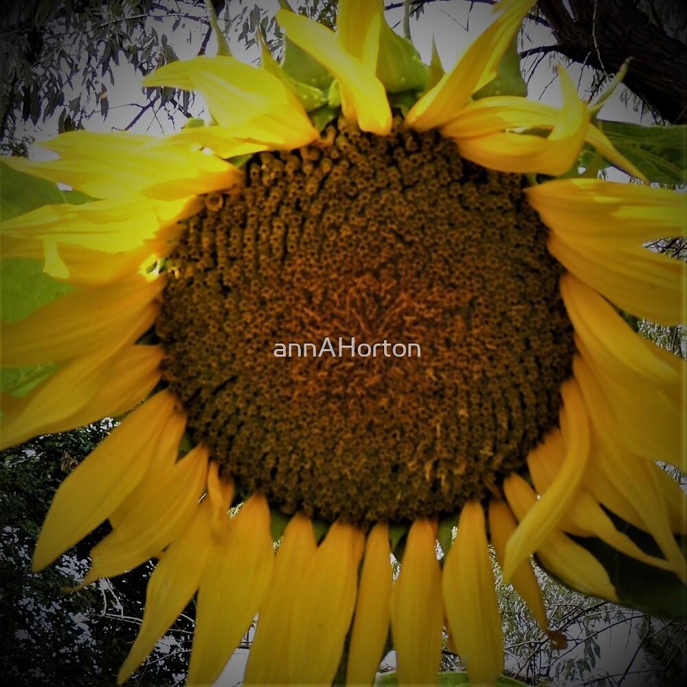 Sunflower Joy by annAHorton